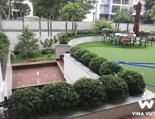 Thiết kế sân vườn hiện đại cho nhà biệt thự 1 tầng và 2 tầng
